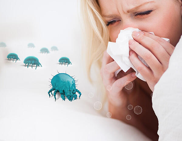 cold-vs-allergy-the-differences